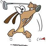 Golf dog