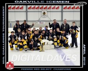 PWES - Oakville Icemen
