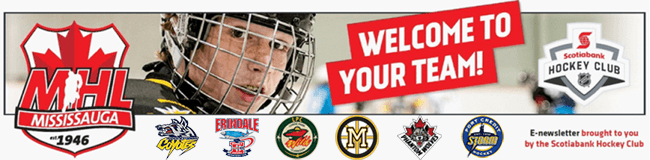 MHL Newsletter - Welcome To Your Team